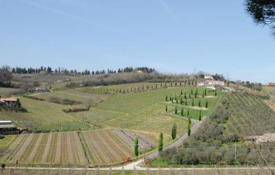Agritourism with View in the Italian Countryside