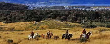 Trekking/lezione di equitazione