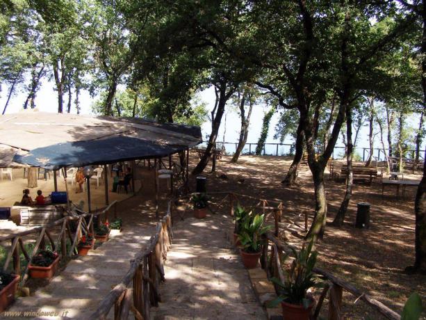 Parco al Lago di Vico