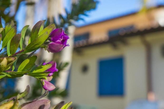 Hotel zona Sabaudia, immerso nel Parco del Circeo