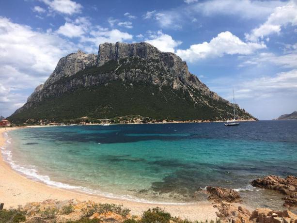 Appartamenti vicino Isola di Tavolara Sardegna