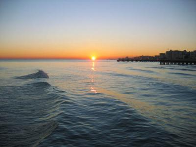 Best Hotel price in Jesolo and Venice