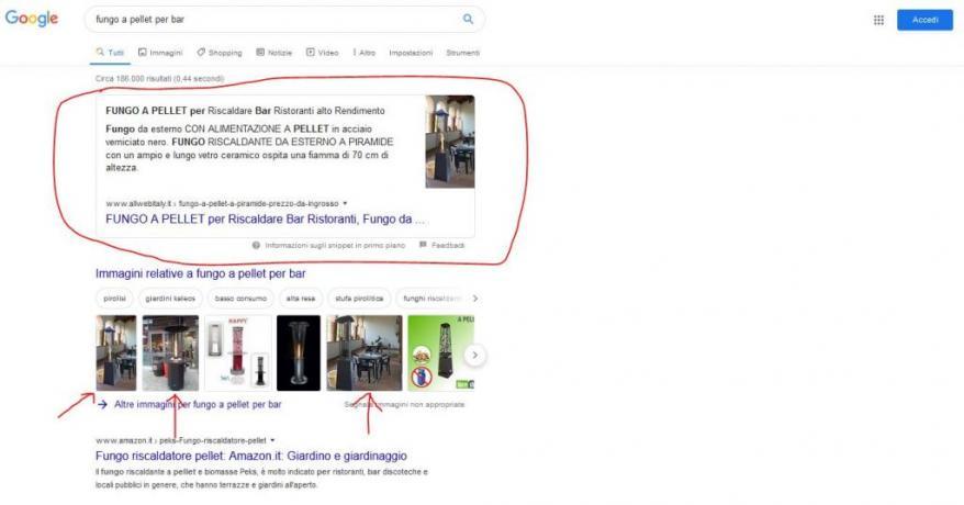 Come essere in Prima Pagina Google: Fungo-Pellet-Bar-NettunoFidas