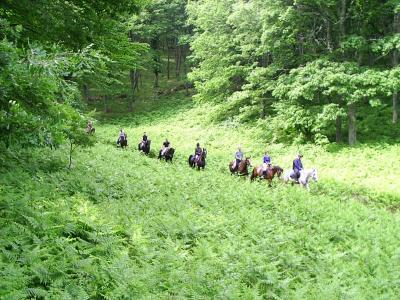 Escursioni a cavallo vicino Ruggiano
