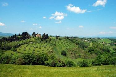 Agritourism in Chianti