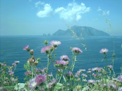 Capri from the Sorrento peninsula