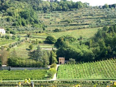 Agriturismo in Toscana Appartamento Oratorio
