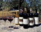 Umbria: typical wine