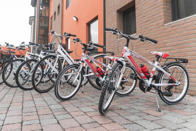 Mountain bike a disposizone: Pista illuminata per allenamenti