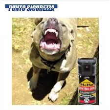 Donna sicura con lo spray anti-aggressione
