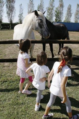 Agriturismo ideale per bambini