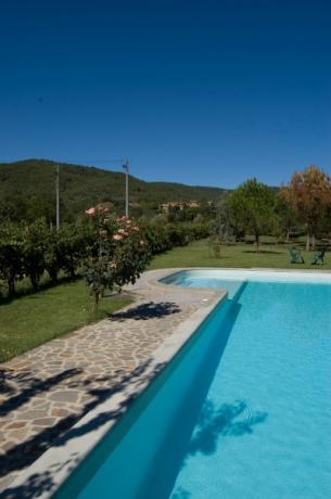 Grande giardino con piscina