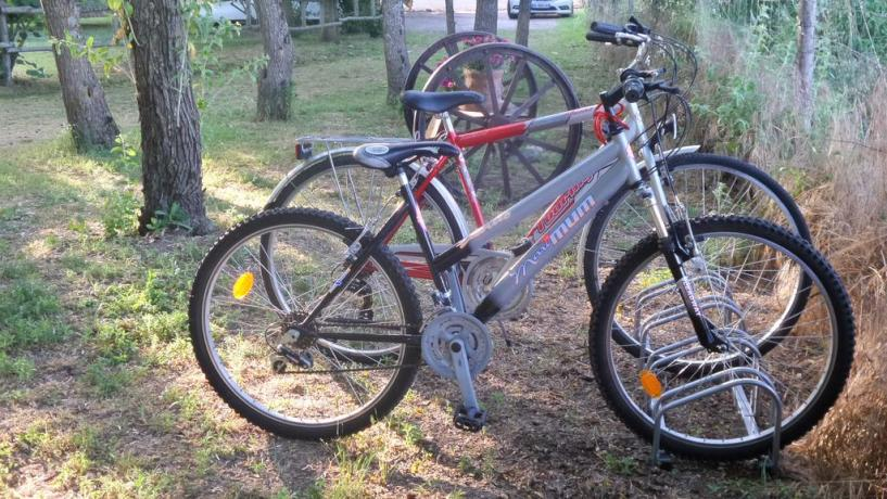 Noleggio biciclette casa vacanze Lago Trasimeno