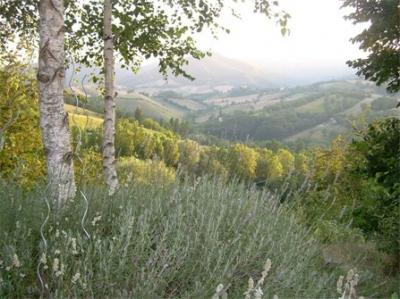 Gran Burrone Parco Subasio Umbria