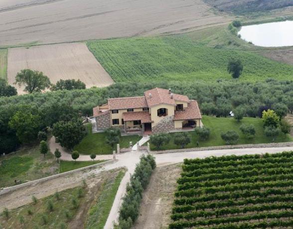 Villa tra gli Olivi, con SPA e benessere