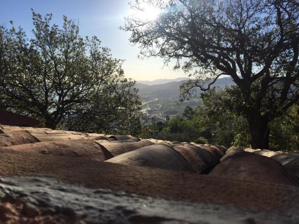 Agriturismo adatto a Famiglie a Patti Vista Panoramica