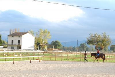 lezioni di equitazione per i piu piccoli