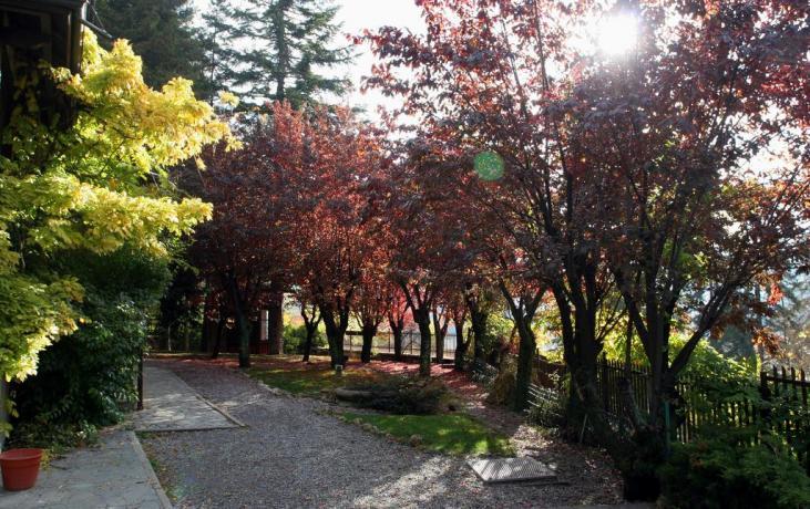 Villa-vacanze famiglie con giardino 100metri centro città Bardonecchia