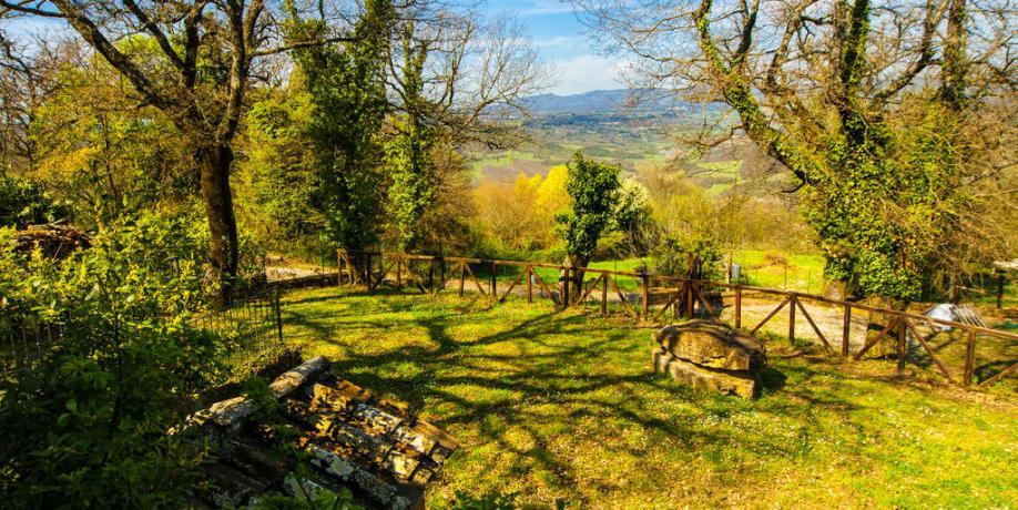 Ampio giardino in Agriturismo a Torre Alfina