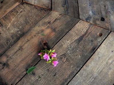 Larice Antico in patina spazzolato-cerato