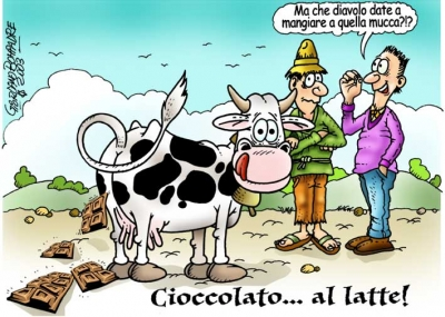 Vignetta   Eurochocolate    Umorismo   Fumetti