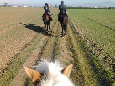 passeggiate interne ed esterne a cavallo
