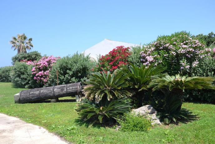 Resort davanti al mare con grande giardino-Trapani