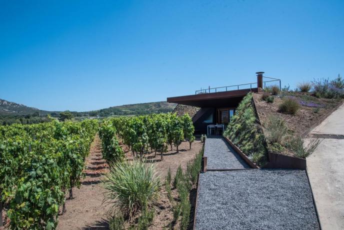 Casa vacanza a Lipari con azienda vinicola Sicilia