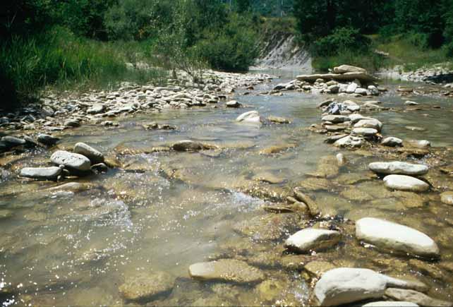 fiume adiacente