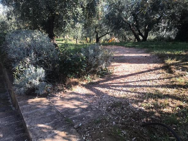 Agriturismo con Grandi Spazi All'Aperto in Umbria-Bettona