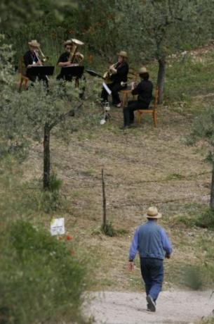 Musica dal vivo immersi nel verde dell'Umbria