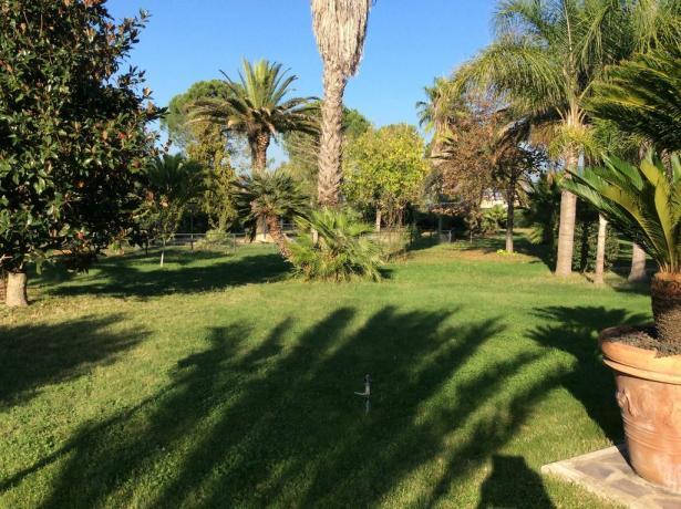 Hotel Giardino di Aprilia - Giardino