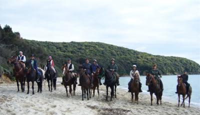 Passeggiate a Cavallo nella natura