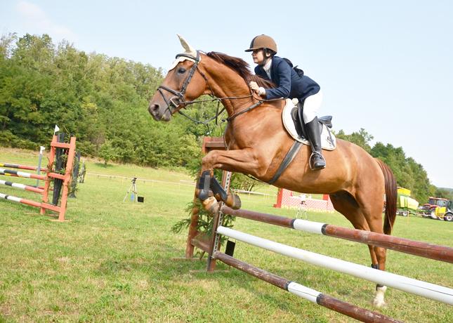 Passione per i Cavalli, Equitazione in zona