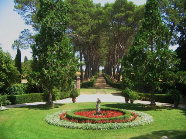 ampio e curato giardino panoramico
