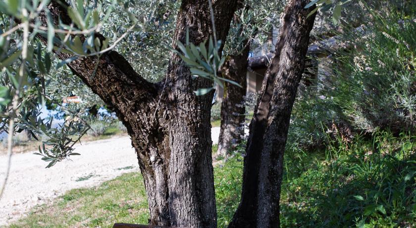 Agriturismo Corta di Colle in Umbria