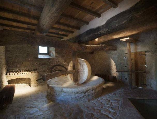 Frantoio storico sotto all'appartamento in Toscana