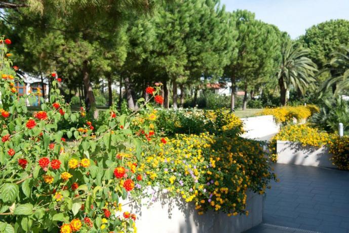 Aiuole fiorite giardino albergo a Vieste