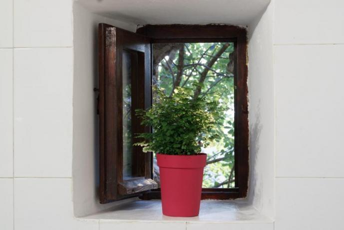Bagno con finestra Appartamento-Giolli Borgo-sul-Clitunno Umbria