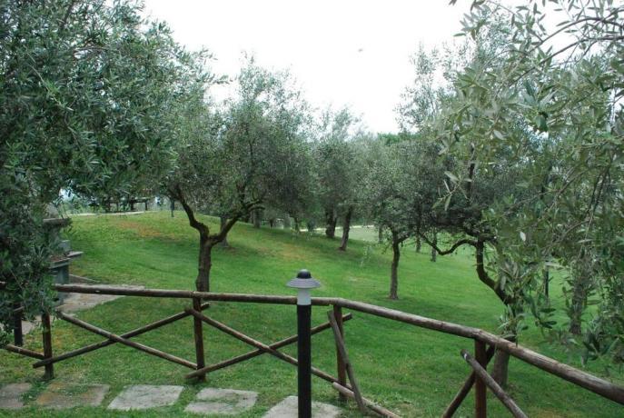 Grande parco verde