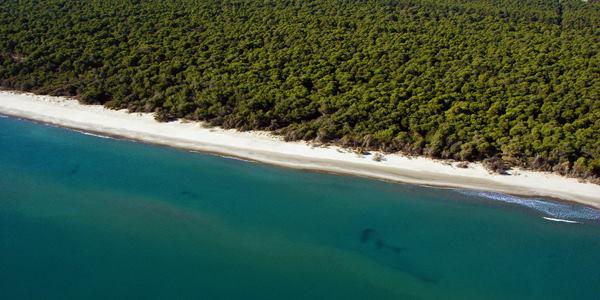 Residence fronte mare con Spiaggia convenzionata-Metaponto