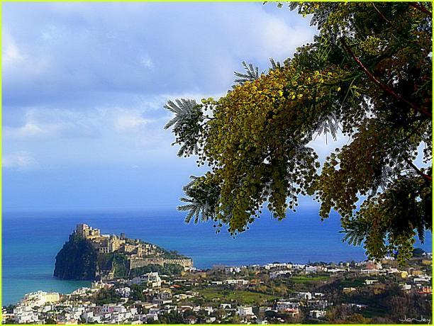 Vista Castello Aragonese a Ischia