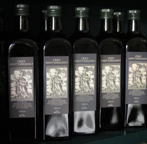 produzione olio extra vergine dop