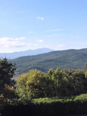 Agriturismo Torre Alfina con vista panoramica