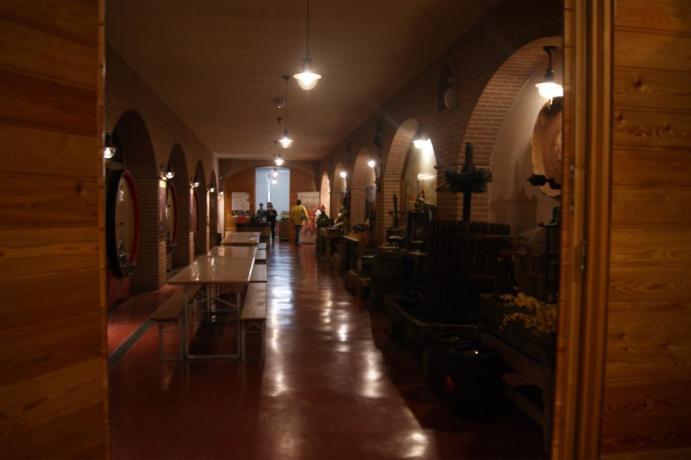 visita cantina dionigi, si parte da cantalupo