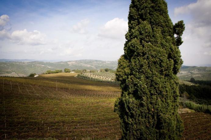 Casale a pochi km da Todi