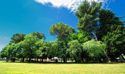 Parco con Giardino