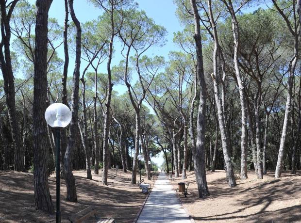 Resort Baia Domizia con pineta e parco giochi