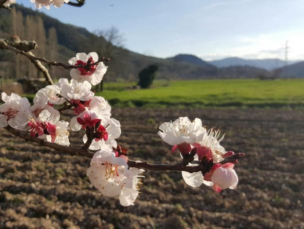 Primavera in Umbria a Ferentillo
