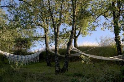 relax tra gli alberi in agriturismo con appartamen